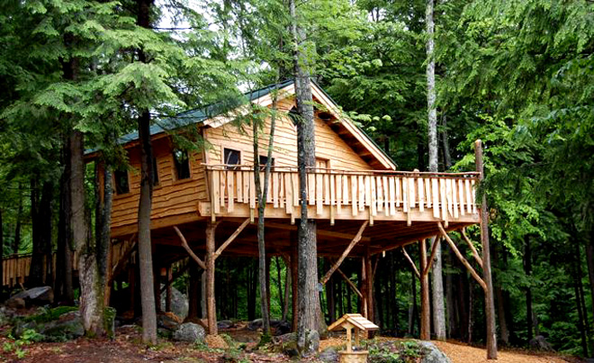 pine tree camp treehouse featured in one new england magazine pine rh pinetreecamp wordpress com pine tree house shanghai pine tree house menu